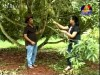 2013-06-21 : BayonTV Ideas Corner